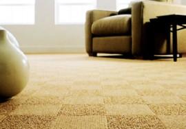 Carpet Restretch and Repair