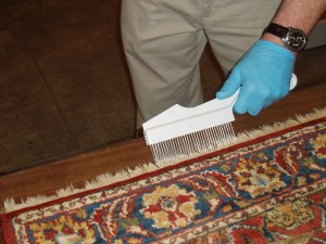 Finally, The Rugs Are Groomed, Hung To Dry And Inspected One Last Time  Before Being Rolled And Returned To Your Home.